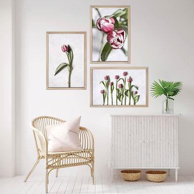 Pink Tulips Wall Art Print Set | Collection 3