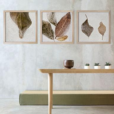 Frozen Leaves Print Set | Collection 4