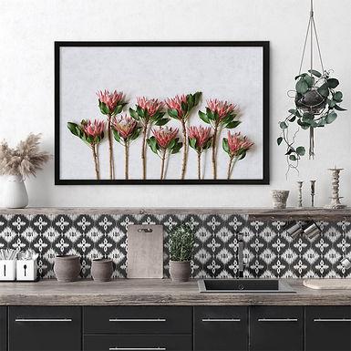 Red King Protea Wall Art | Single Print 1
