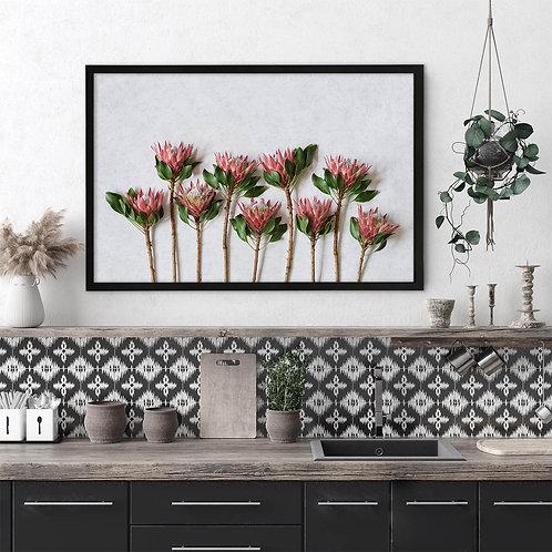 Red King Protea Wall Art   Single Print 1