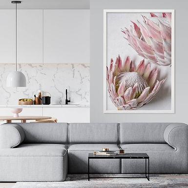 Blush Pink King Protea Wall Art | Single Print 10