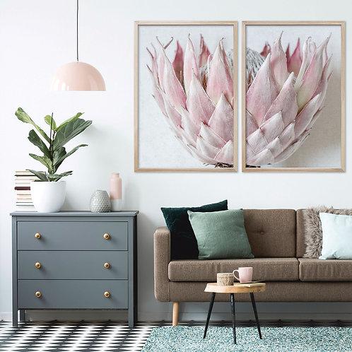 Blush Pink King Protea Wall Art Print Set | Collection 5