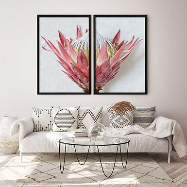 Red King Protea Wall Art Print Set   Collection 1
