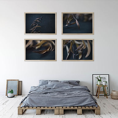 Moody Leaves Print Set   Collection 2