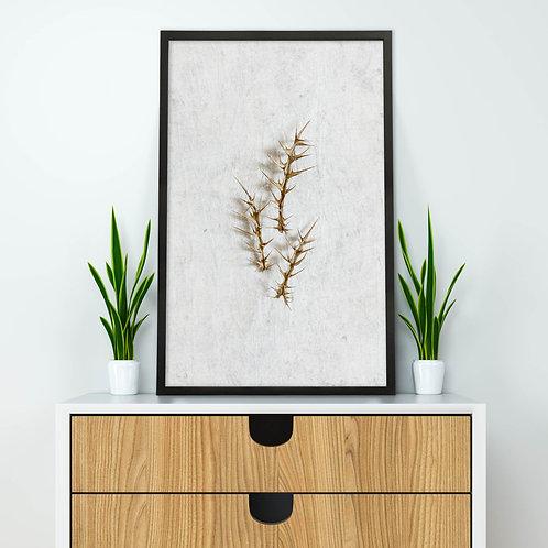 Dried Botanicals Wall Art Print 3
