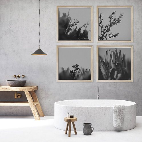 Dramatic Botanicals Wall Art Print Set