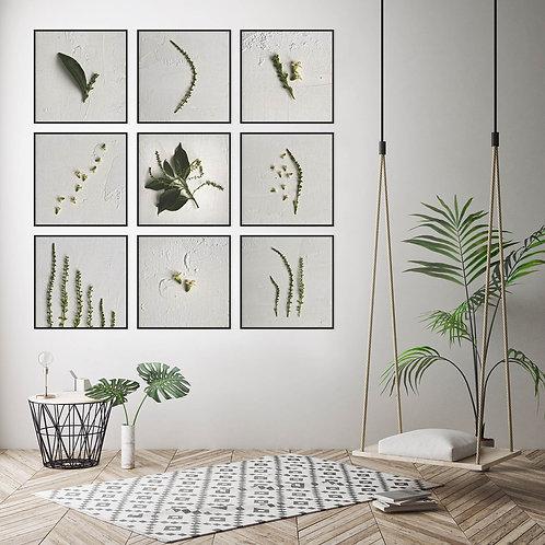 greenery on white wall art home decor print set