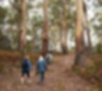 pack fre walking tasmania, freycinet guided walk, tasmania tours, freycinet retreat guide walk, see tasmania