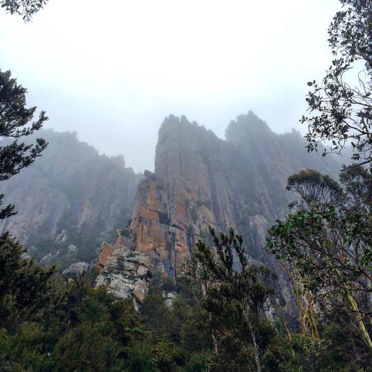 Mount wellington day tour