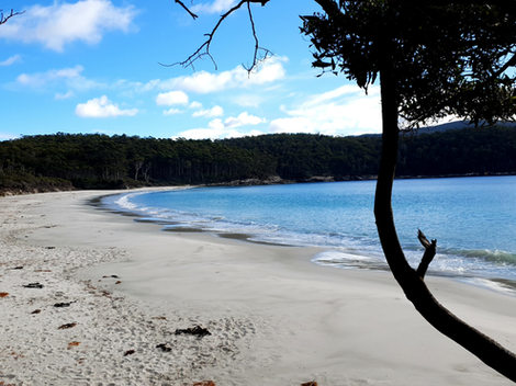 Fortescue Beach