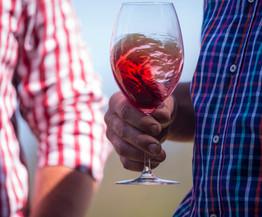 wine tours, wineglass bay, walking tours, freyciet retreat, 3 day walks tasmania, easy walks tasmania, see tamania