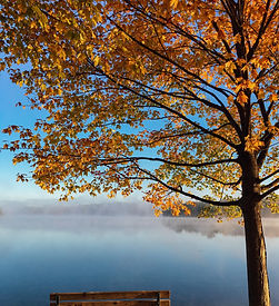 Bench by the lake on an autumn's day_edited_edited.jpg