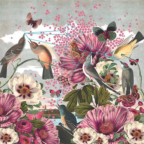 Birds and Butterflies Wallpaper Mural