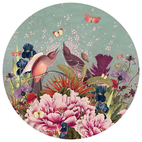 Bloom - Alexandra Gallagher - web.jpg