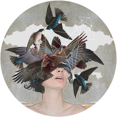 Swallow Blind • Giclèe Limited Edition