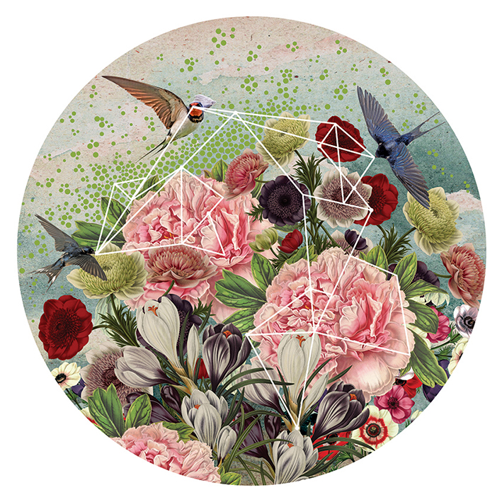 Swallow • Mural