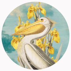 Yellow • Alexandra Gallagher