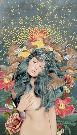A Songbirds Melody