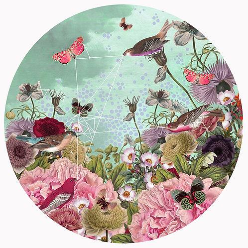 Bird Song  • Giclèe