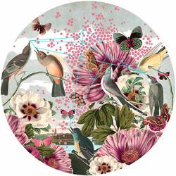 Birds & Butterflies • Mural