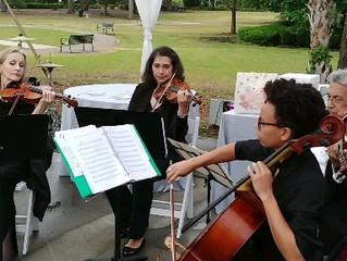String quartet for the wedding in the Maitland Arts Center on March 31, 2018
