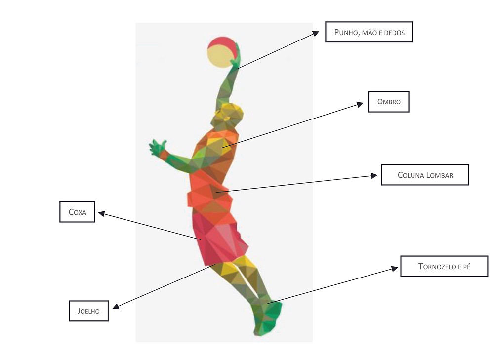 Zonas anatómicas frequentemente lesionadas