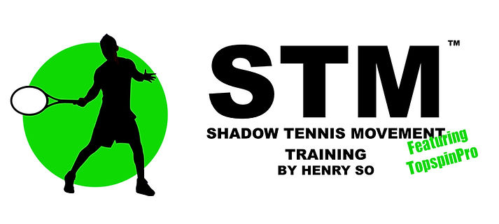 STM Training book logo.001.jpeg