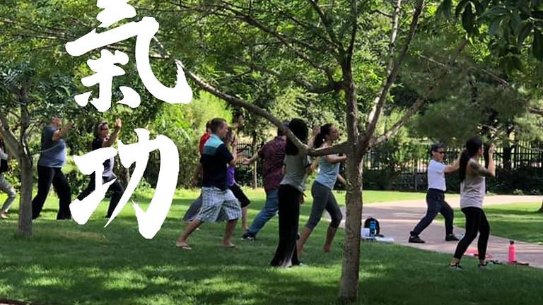 Hunyuan Qigong Classes