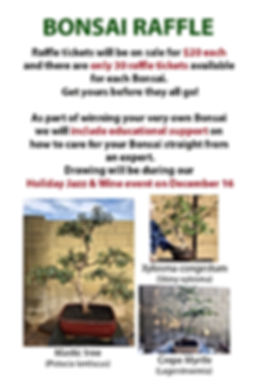 Bonsai Raffle 2018 small.jpg
