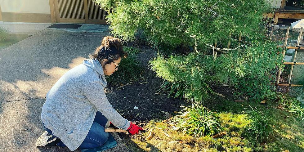 Saturday Morning Gardening