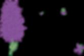 Blossom & Flourish Logo
