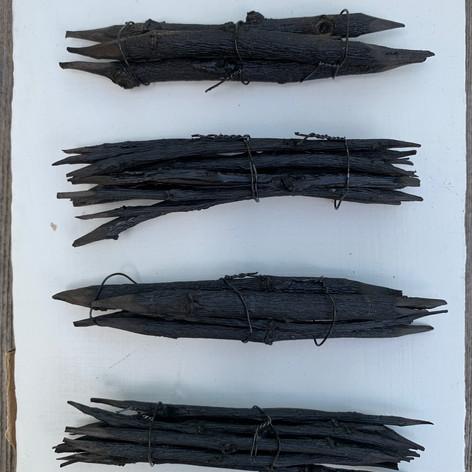 Carbonized Willow twigs