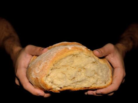 Corso Pane e Pizza ai Grani Antichi