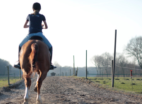 Training Horses for Specific Attributes - Strength, Endurance, Speed etc.