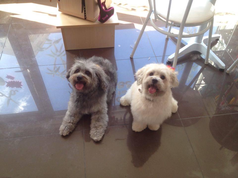 Lucky et Canelle