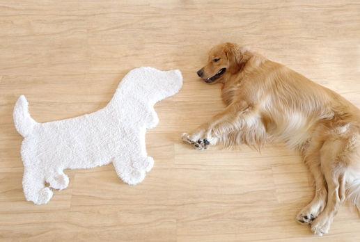 Doggie Rug.JPG