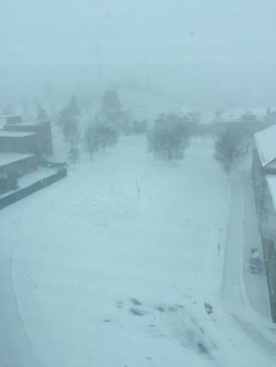 No winter would be complete in Ithaca without a snowstorm.