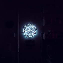 We decorated our lab door with a snowflake from last year.