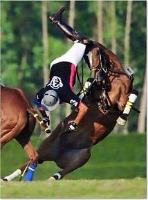Protect your head - polo fall (1)