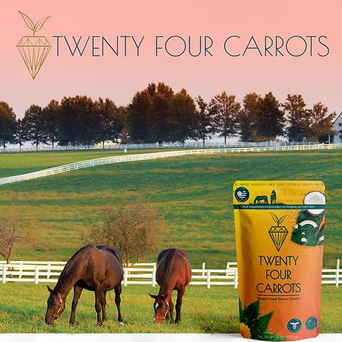 BEST HORSE TREATS COOKIES TWENTY FOUR CA
