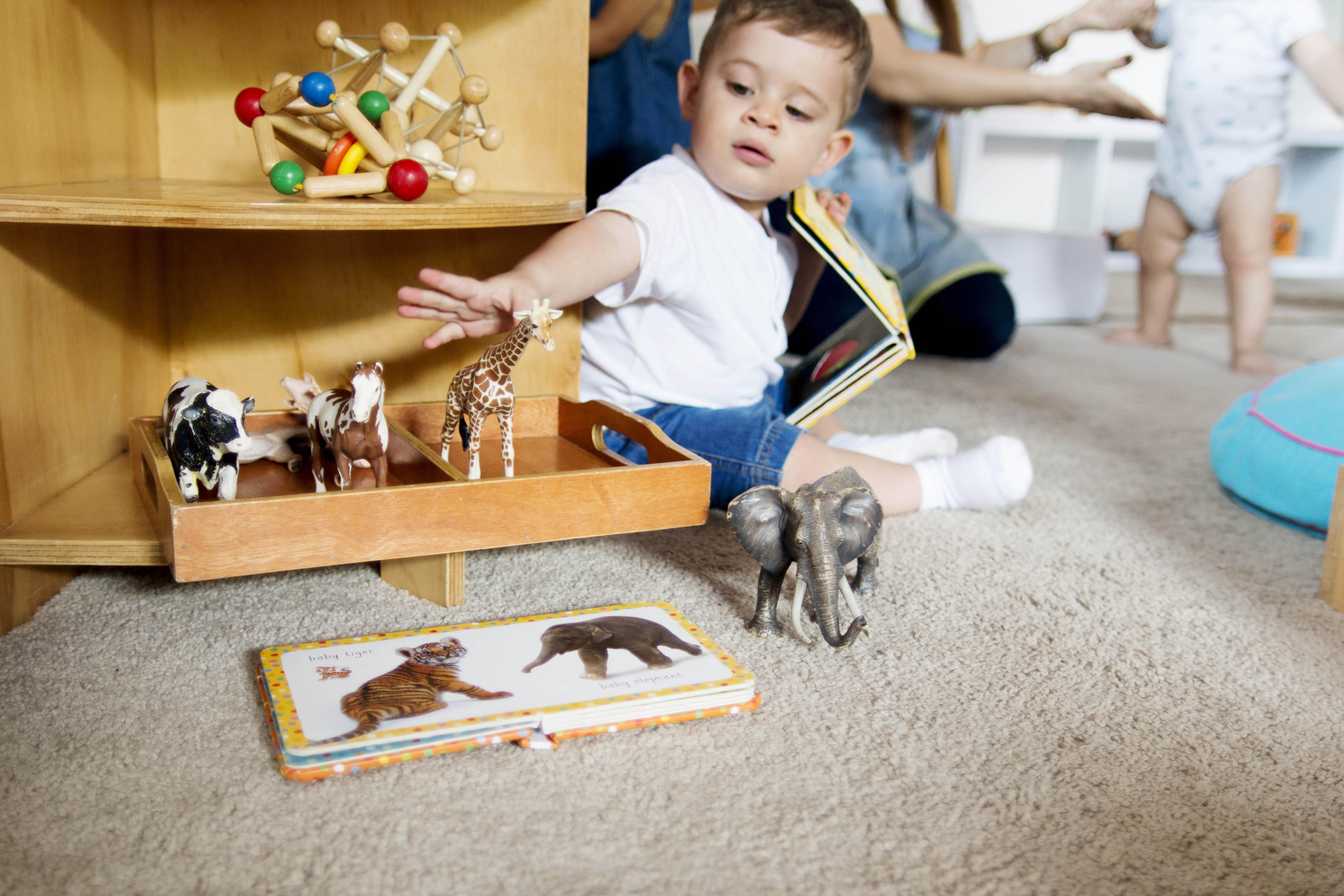 Filii Montessori Web-Ready 71