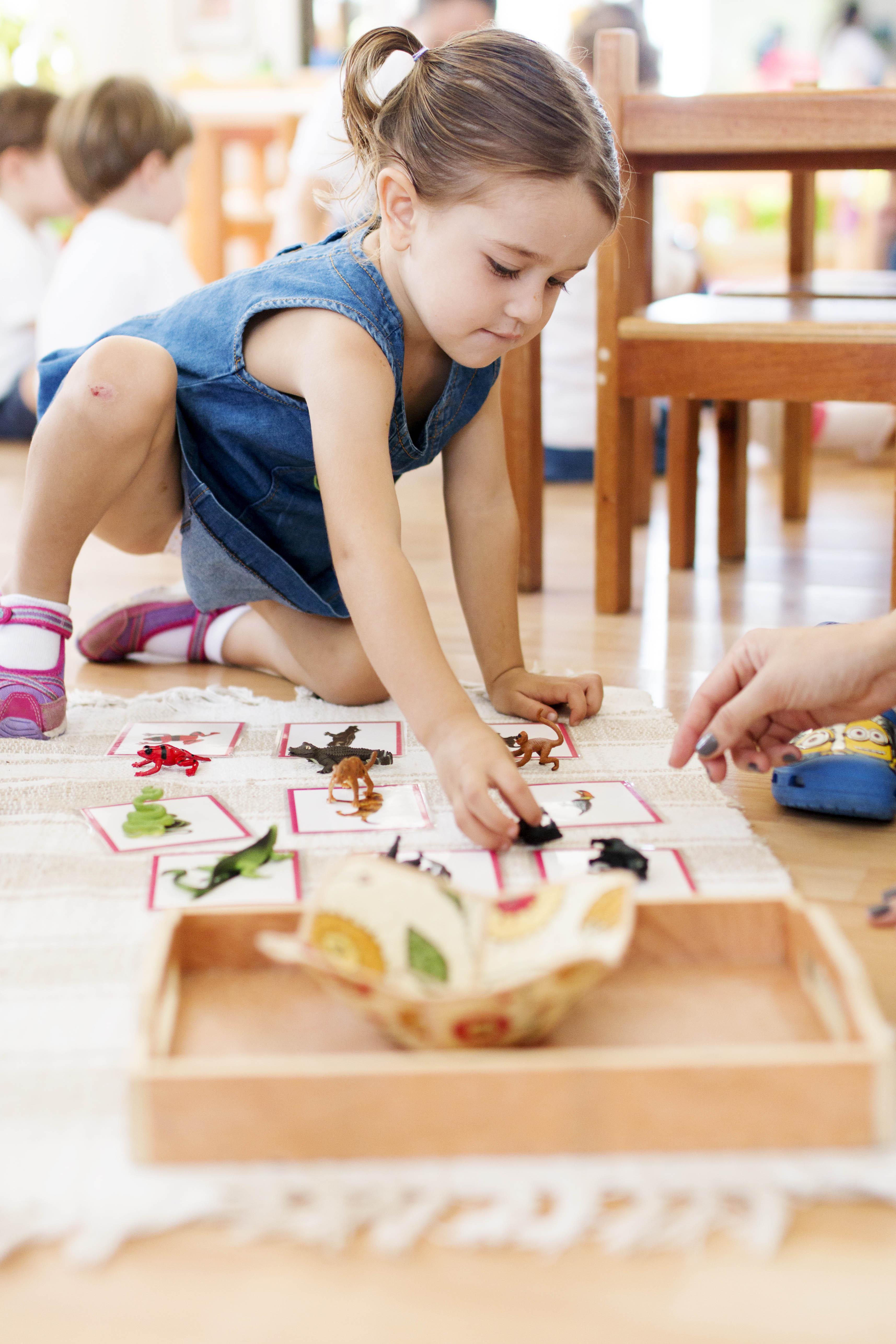 Filii Montessori Web-Ready 45