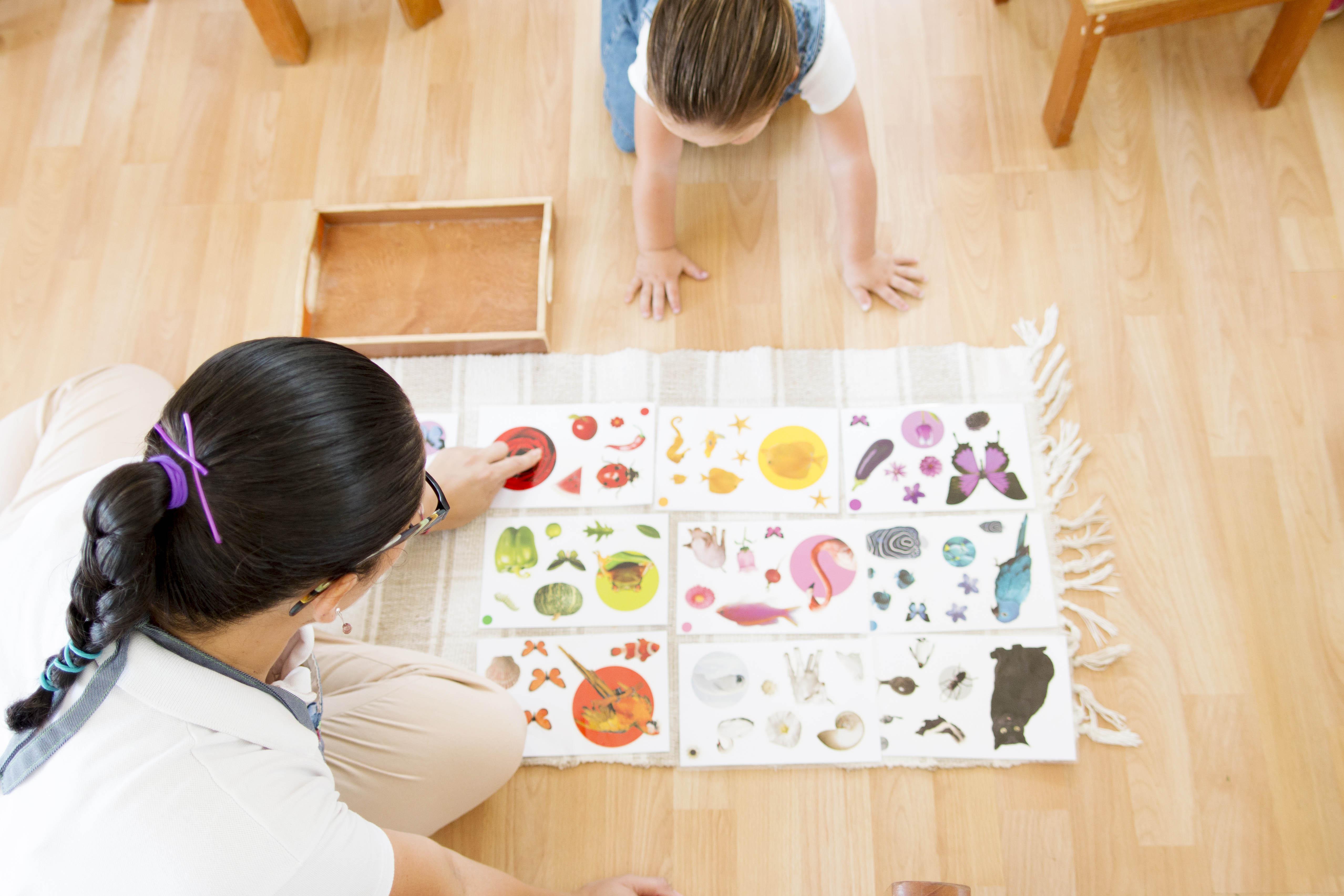 Filii Montessori Web-Ready 50