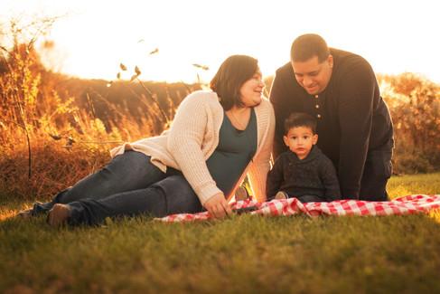 Khan Family Pre-Baby Web-Ready 27.jpg