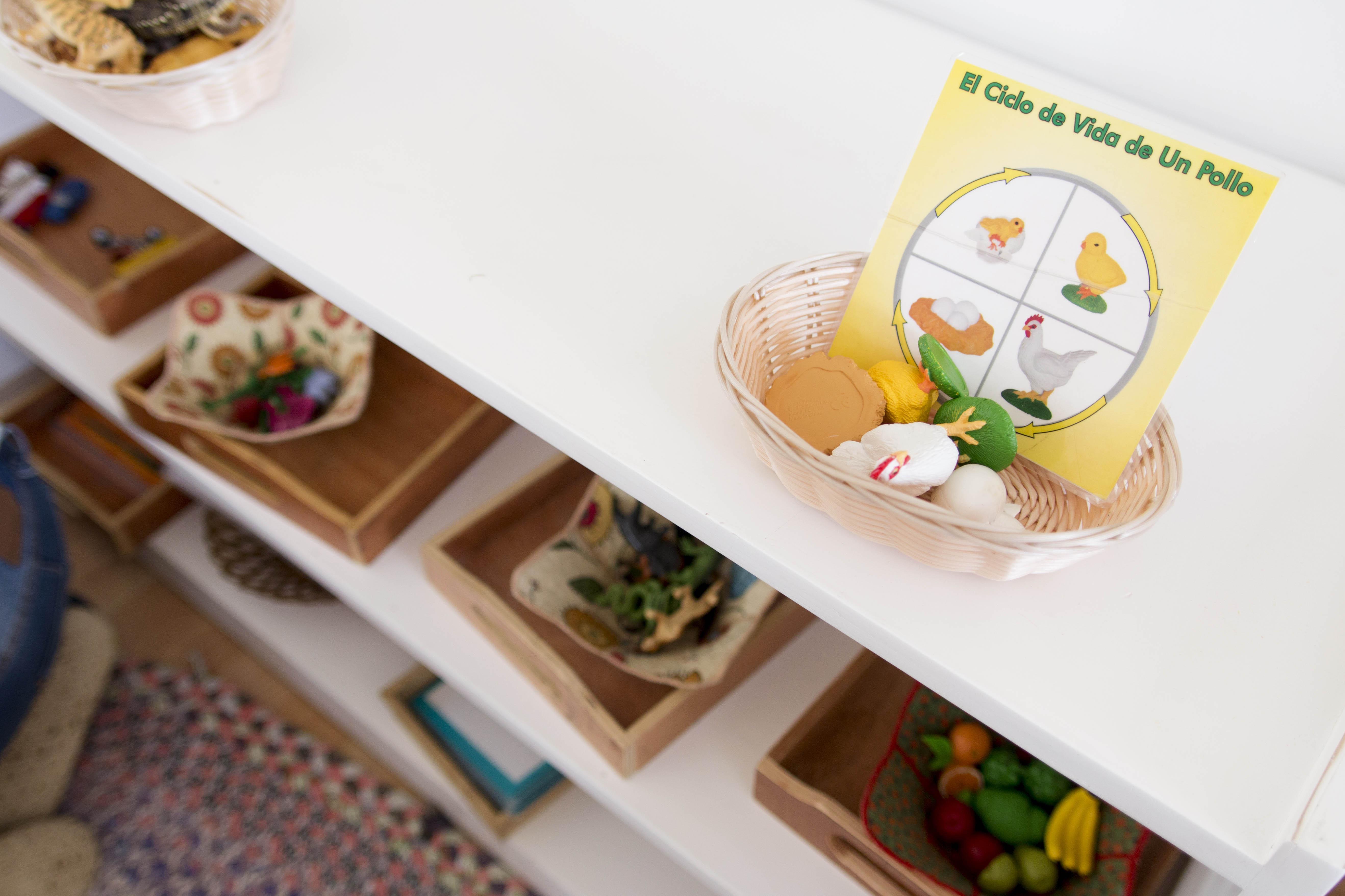 Filii Montessori Web-Ready 13