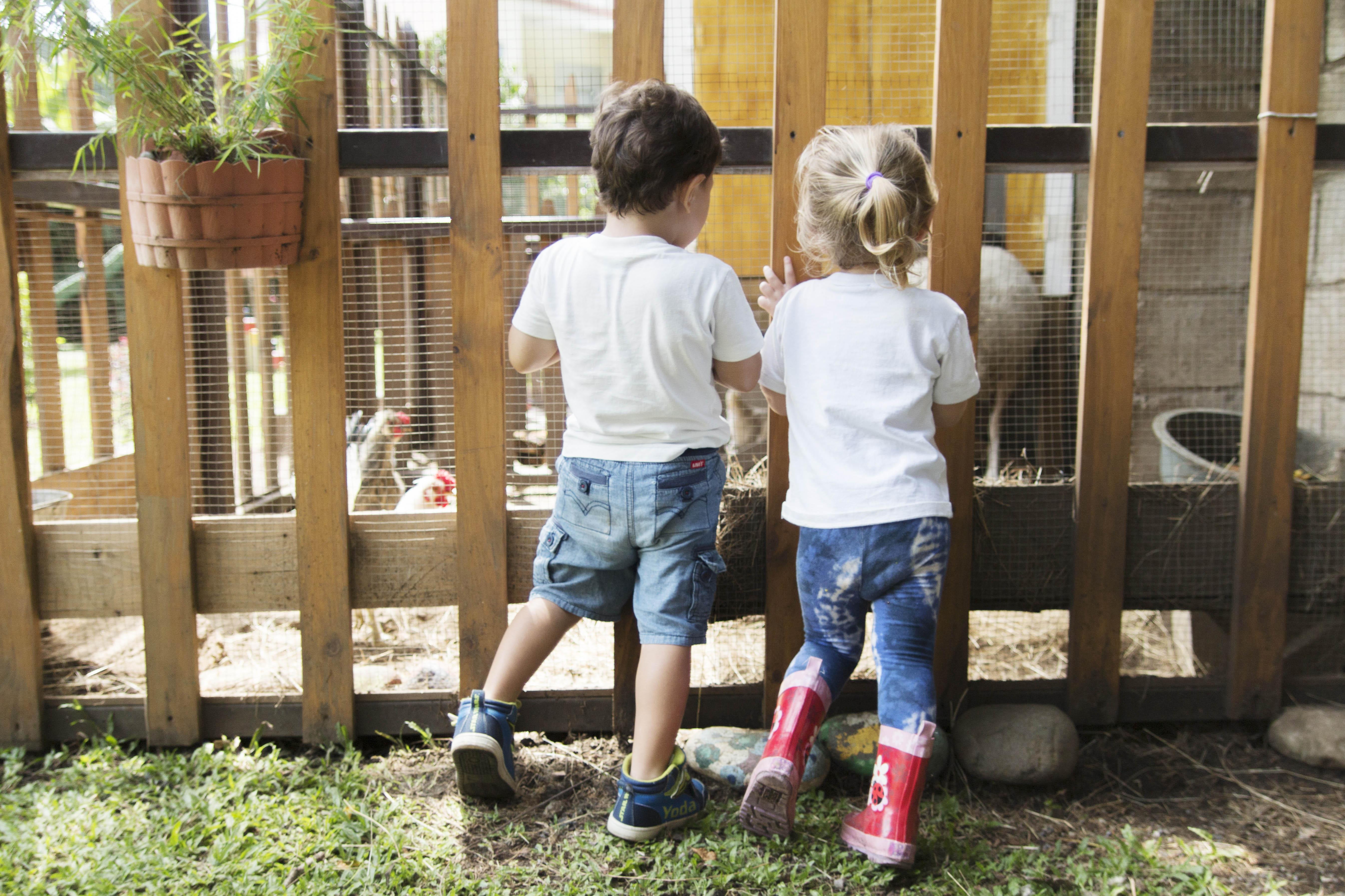 Filii Montessori Web-Ready 21