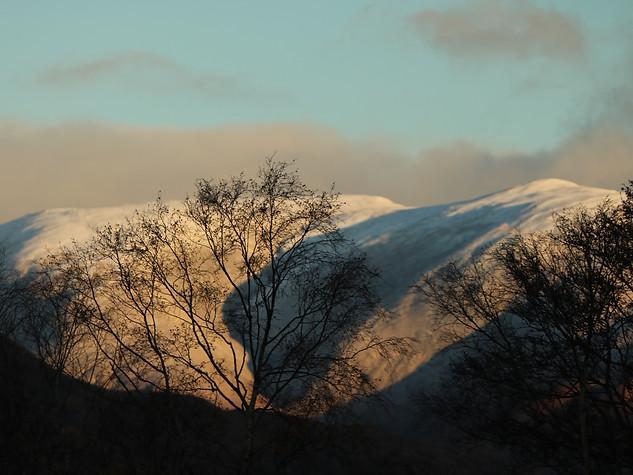 Winter Light in Ardgour
