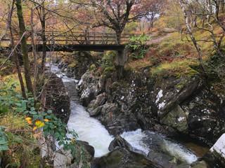 Paddy's Bridge