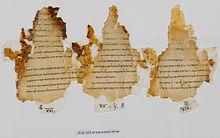 temple-scroll.jpg