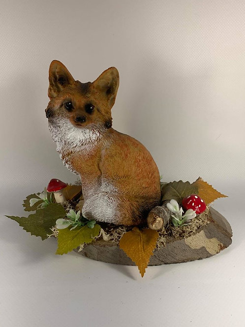 Fox sitting in a natural  woodland scene